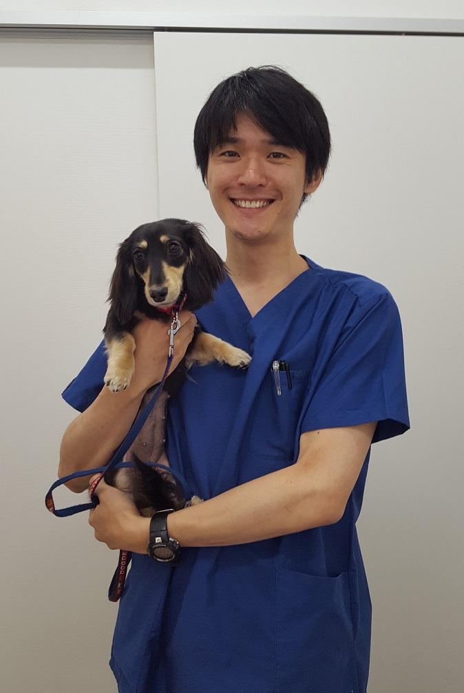 腹腔鏡避妊手術 犬